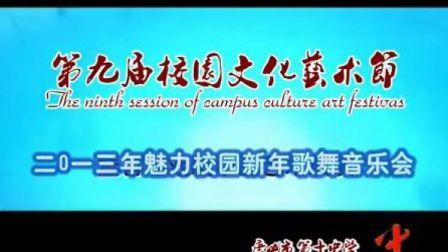"""2013年""""魅力校园""""新年歌舞音乐会"""
