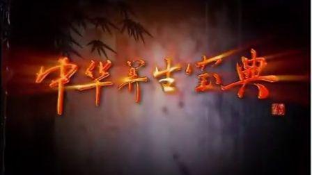 中华养生宝典:第13集  中华养生人物孔子