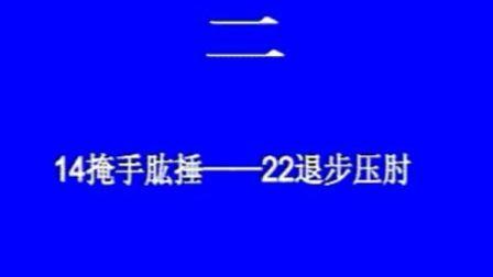 【张志俊先生】驻马店培训〔2〕