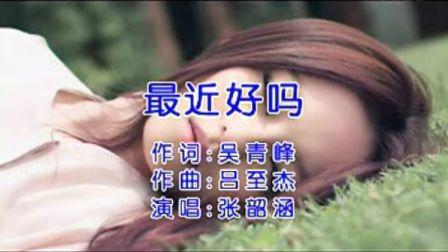 张韶涵 - 最近好吗 【VCD】
