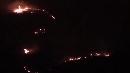【拍客】元宵夜山林火灾似火蛇污染严重