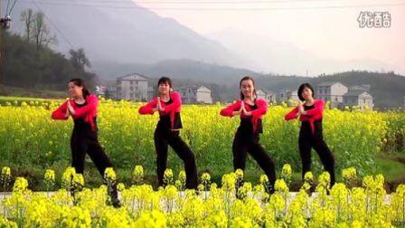 花之俏广场舞《快乐的跳吧》