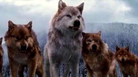 狼群大战吸血鬼2