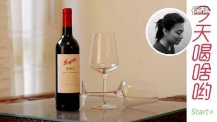 澳洲奔富酒园BIN2设拉子穆维多红葡萄酒2010-喝啥酒评-Marcus Liu