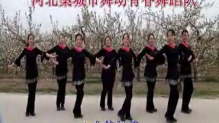 藁城市梨园广场舞
