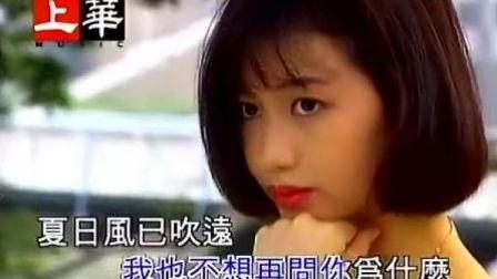 高胜美-潇洒的走MTV
