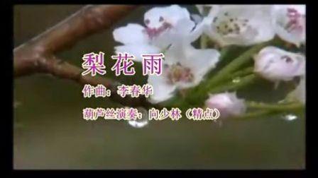 梨花雨(完整版1)