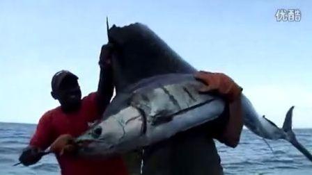 钓鱼视频-钓旗鱼!!在肯尼亚 - 钓鱼冒险家与Cyril Chauquet