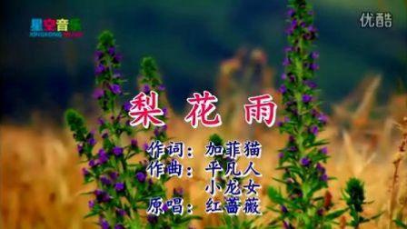 梨花雨   红蔷薇   星空音乐