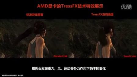 【AMD Official】《古墓丽影》人物头发渲染效果 -AMD TressFX技术展示