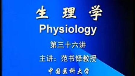中国医科大学【生理学视频】36.