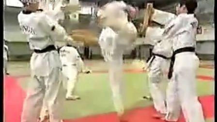 释行鸿!真正的高手!少林 VS 跆拳道 【中文字幕】 完整版! _标清