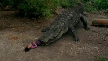 无知男女开枪射杀鳄鱼与巨蟒, 没想到鳄鱼与巨蟒联合见人就吃