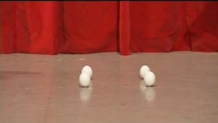 暑假科普-骆驼站在鸡蛋上