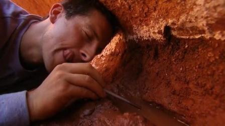 看贝爷表情, 就知道这石水缝流出来的泉水有多甘甜了!