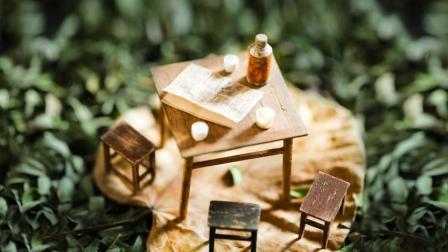 房子越住越贵, 看了他造的小房子, 才发现从前那么美好……