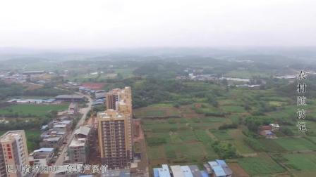 航拍: 绵阳市三台县芦溪镇原来这么大, 我还是第一次见这样的芦溪