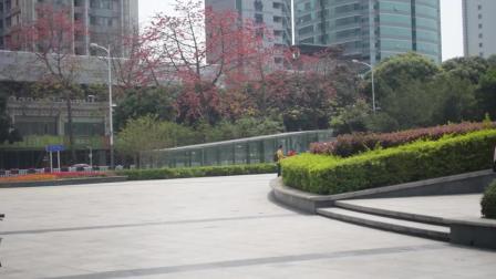 实拍深圳荔枝公园, 太美了, 你去过吗?