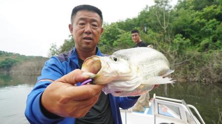 《听李说鱼2》第26集 揭露钓鱼界的歪门邪道