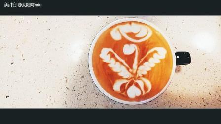 美拍视频: 咖啡拉花玫瑰天鹅#才艺#