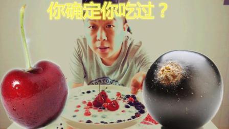 农村小伙花样试吃, 野生樱桃, 黑加仑, 这样的吃法你肯定没有尝试过