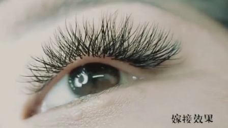【微林美睫.Y型睫毛】最新高清嫁接睫毛视频教程-教学课程培训