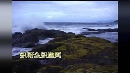 董文华 - 《渔家姑娘在海边》_歌词大意是.大海边哎.沙滩上哎.风吹榕树沙沙响.海南美景.