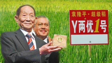 他是一位活着就被写进教科书的伟人, 他养活了上亿人, 他是中国的英雄!