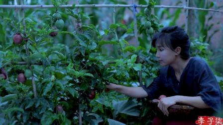 李子柒古香古食 第一季 第51集 吃法一抓一大把 浸润夏天的沁凉果味 百香果