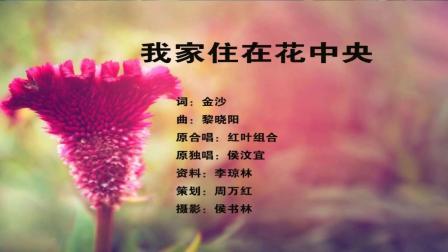(小宋祖英)演唱: 《我家住在花中央》