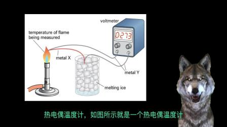 27 热电偶温度计 Thermocouple thermometer IGCSE物理