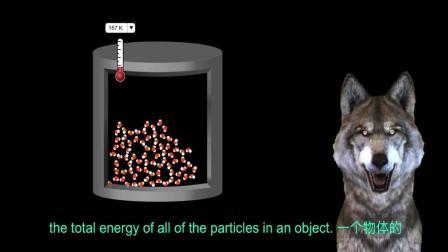 28 热熔和比热容  Thermal capacity and  specific   heat capacity IGCSE Physics