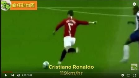 2018世界杯 守门员无法承受的210Km/h极速射门 一击必杀的好球