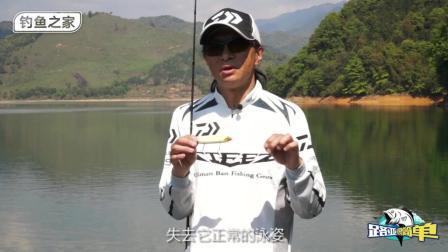 路亚钓鱼铅笔实战使用技巧