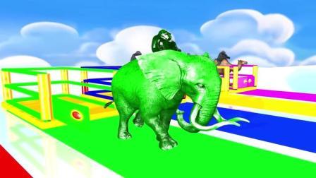 益智: 幼儿英语启蒙, 大象骆驼奶牛等动物带猩猩吃不同水果变颜色