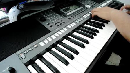 电子琴演奏-爱去星火DJ版