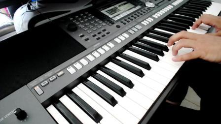 电子琴演奏-花儿与少年