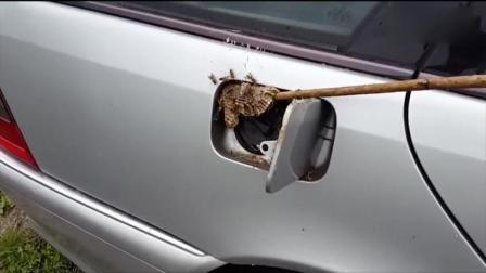 奔驰车主打开油箱盖的时候当场懵了!