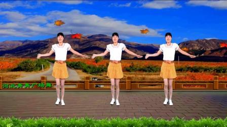 信天游民歌广场舞《黄土地上黄》歌醉舞嗨! 入门16步附口令教学好学好看