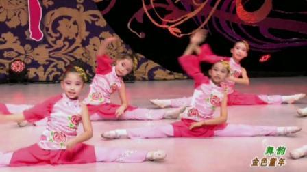 儿童舞蹈《舞韵》幼儿舞蹈