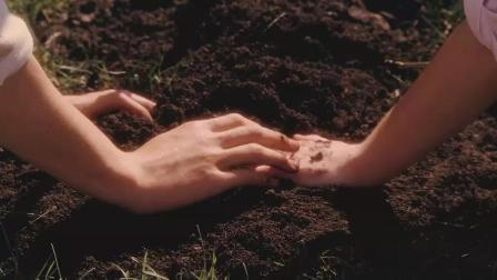 豆瓣评分8.9, 不得不看的电影《怦然心动》懵懂的年龄纯纯的爱!