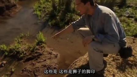 贝爷教你利用动物足迹, 在非洲草原寻找水源!