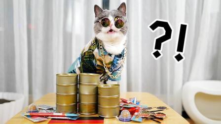 小猫咪沉迷世界杯, 霸气下注! 结果猫粮全输光!