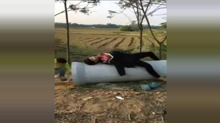 农村放鞭炮搞笑恶搞视频, 忍住不要笑