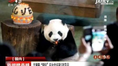 """大熊猫""""圆仔""""在台北庆祝5岁生日"""