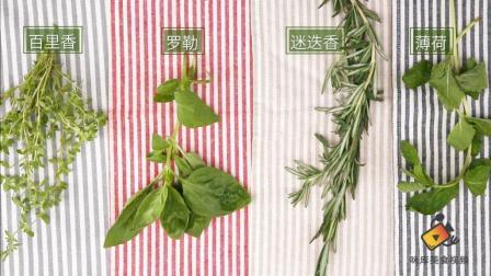 薄荷、罗勒、迷迭香, 常见的香草应该如何保存? -食材百科