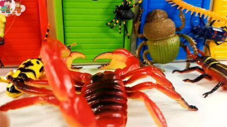 好多小动物, 大红虾独角仙和蟑螂还有大蜘蛛, 儿童玩具, 小臭臭亲子游戏