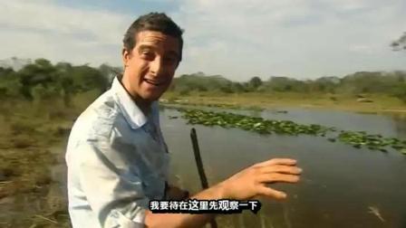 看贝爷是怎么偷渡充满鳄鱼的河流的! 这操作可以啊!