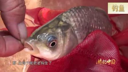 钓鱼挂蚯蚓也是很有学问的, 一群人听李大毛的专业讲解