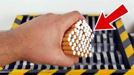 把各种香烟扔到碎纸机里, 会发生什么事?
